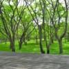 2LDK House to Buy in Kitasaku-gun Karuizawa-machi Interior
