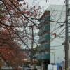 シェアハウス ゲストハウス 尼崎市 外観