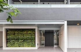 新宿区大京町-1K公寓大厦