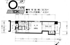 福岡市中央区薬院-1DK{building type}