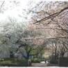 2DK Apartment to Rent in Itabashi-ku Park