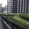 1LDK Apartment to Buy in Koto-ku Common Area