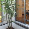 在豊中市購買3SLDK 獨棟住宅的房產 戶外