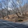 在北佐久郡軽井沢町購買土地 土地的房產 戶外