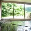 Whole Building Hotel/Ryokan to Buy in Oshu-shi Bathroom