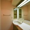 在涩谷区购买2LDK 公寓大厦的 盥洗室