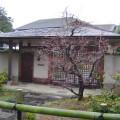 7SLDK House