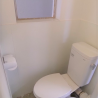 1R Apartment to Rent in Ichikawa-shi Toilet