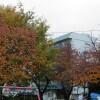 シェアハウス ゲストハウス 尼崎市 公園