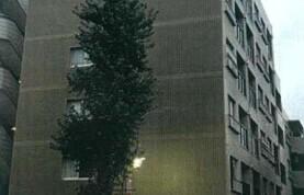 目黒區下目黒-3DK{building type}
