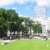 在豐島區內租賃1K 公寓大廈 的房產 公園