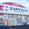 2DK Apartment to Rent in Nerima-ku Drugstore