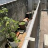 2SLDK House to Rent in Meguro-ku Interior