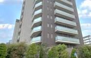 江戸川区 西葛西 1LDK {building type}