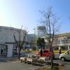 1K Apartment to Rent in Nagareyama-shi Shopping Mall