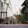 1K Apartment to Rent in Hashima-shi Interior