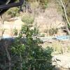 5LDK 戸建て 南丹市 庭
