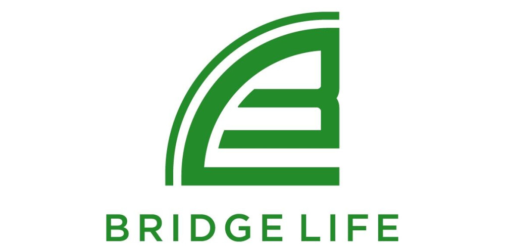Bridge Life Real Estates