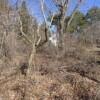 Land only to Buy in Minamitsuru-gun Narusawa-mura Interior