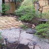 Private Guesthouse to Rent in Toshima-ku Common Area