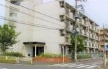 Whole Building {building type} in Koshino - Hachioji-shi